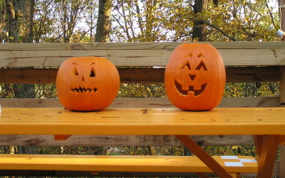 Pumpkin Carving Adventure for Seniors